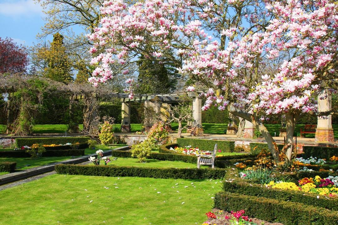 Jardin de style anglais