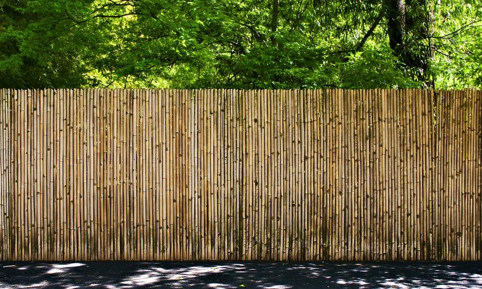 Clôture de canisse en bambou