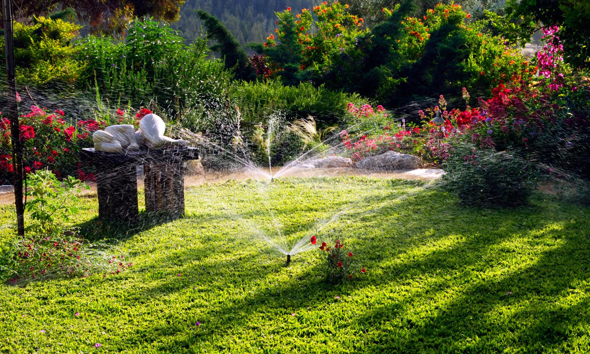 Arrosage de pelouse