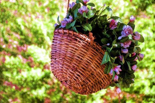 Fleurs dans pot suspendu