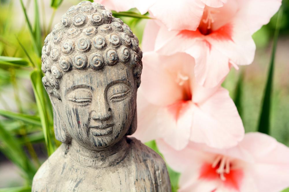 Petite statut zen