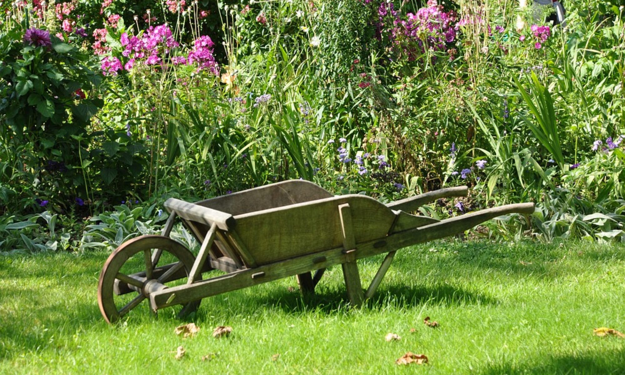 Paysagiste à Lyon : jardin et potager